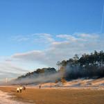 Отдыхаем на курорте Нарва-Йыэсуу