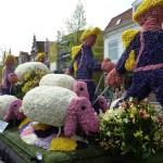 Цветочные фестивали Нидерландов