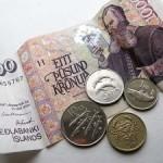 Узнаем больше о датской валюте