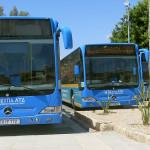 Узнаем о городском транспорте на Кипре