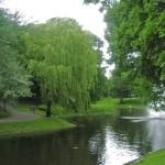 Посещаем Царский лес в центре Риги