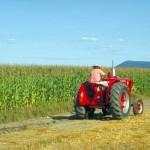 Промышленность и сельское хозяйство Чехии