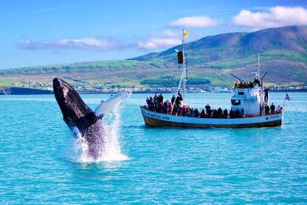 Куда поехать туристу в Исландии