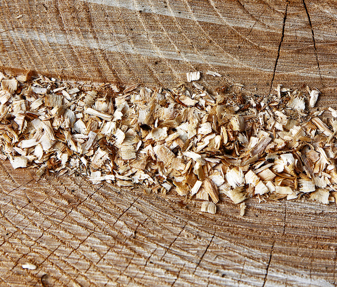 Вторая жизнь древесных опилок