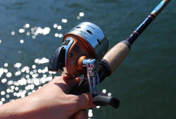 Куда ехать на рыбалку